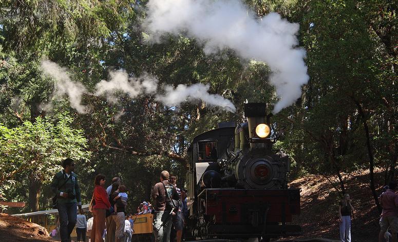 Roaring Camps Railway