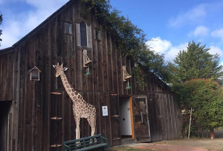 Bryan Preserve Mendocino County
