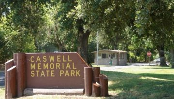 Caswell Memorial State Park Camping