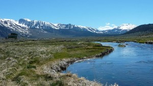 California High Sierra Fishing Guide
