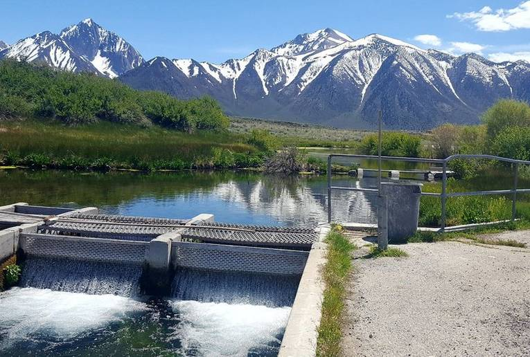 Hot Creek Fish Hatchery
