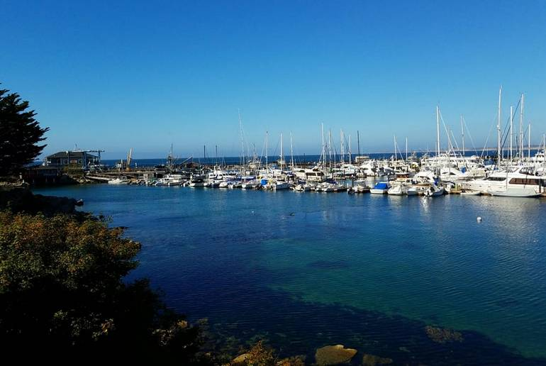 Monterey Bay Harbor