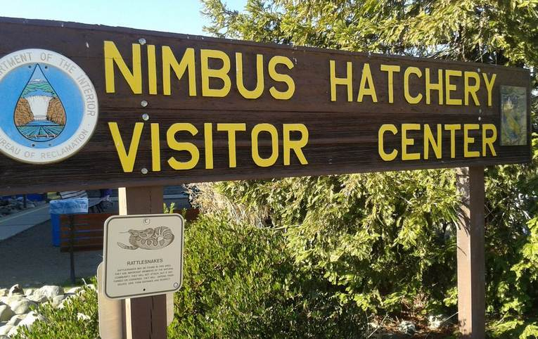 Nimbus Fish Hatchery
