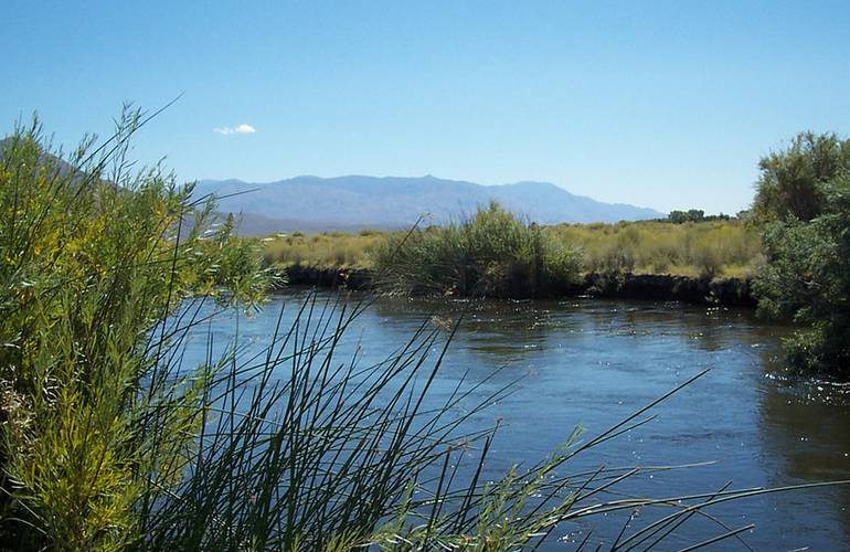 Owens River near Bishop California