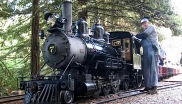 Redwood Valley Steam Train Tilden Park