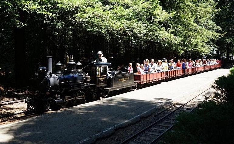 Redwood Valley Steam Train