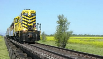 Sacramento River Train Day Trip
