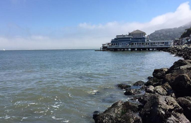 Day Trip To Sausalito from San Francisco