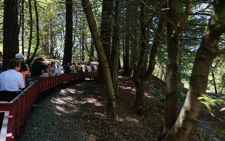 Redwood Valley Steam Train