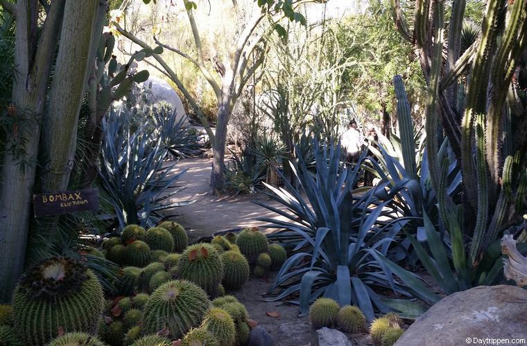 Moorten Botanical Gardens Palm Springs