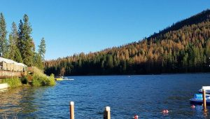 Bass Lake Recreation Area