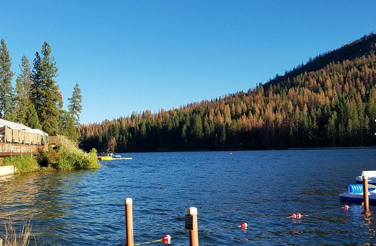 Bass Lake Recreation Area