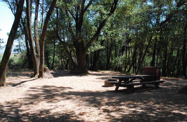 China Camp State Park Campsite