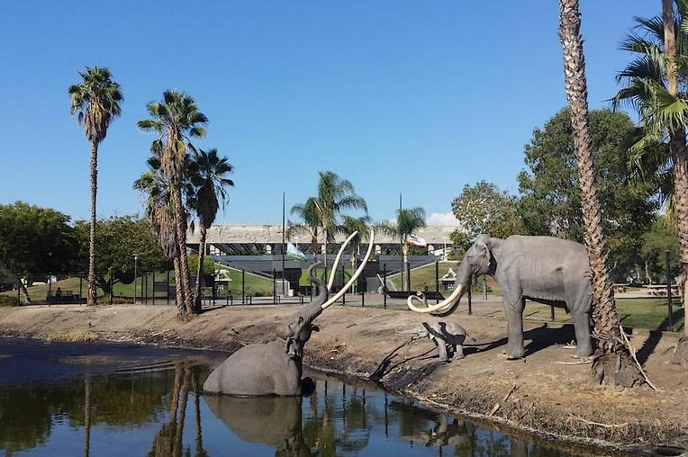 La Brea Tar Pits Los Angeles Day Trip