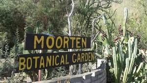 Moorten Botanical Gardens Palm Springs Day Trip