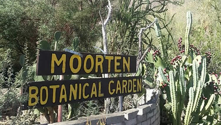 Moorten Botanical Gardens Palm Springs