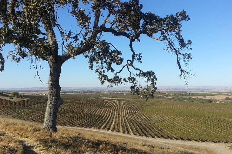 Paso Robles California Central Coast