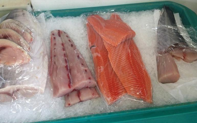 Pearson's Port Fresh Seafood