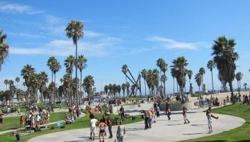 Venice Beach Day Trip Things To Do