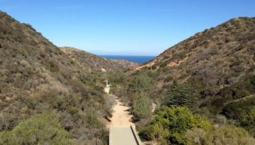 Wrigley Botanical Gardens Things To Do On Catalina Island