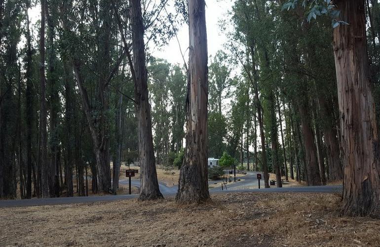 Chabot Regional Park Campground