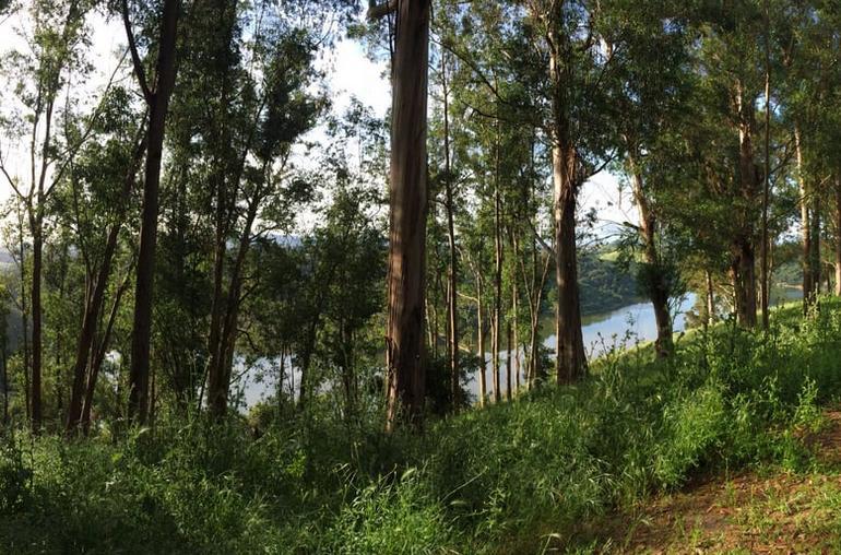 Chabot Regional Park