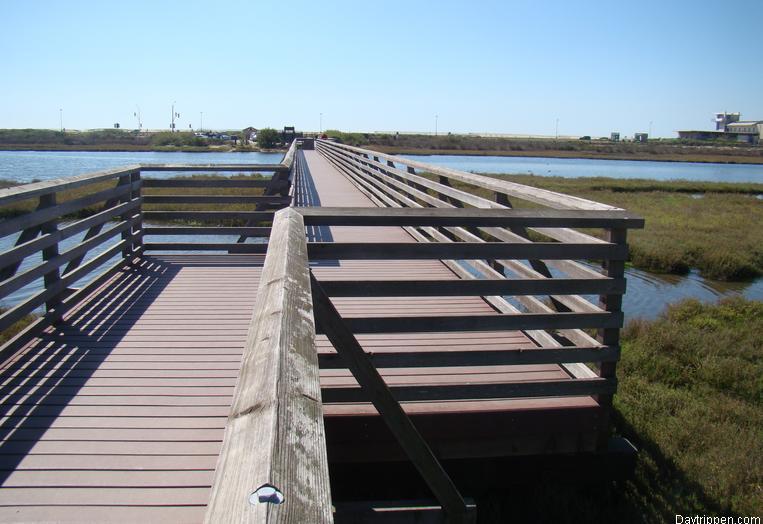 Bolsa Chica Wetlands Huntington Beach