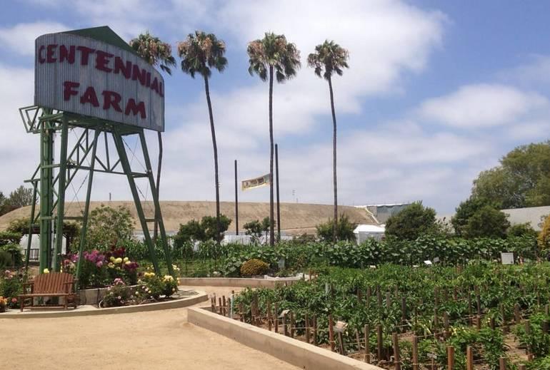 Centennial Farm Costa Mesa