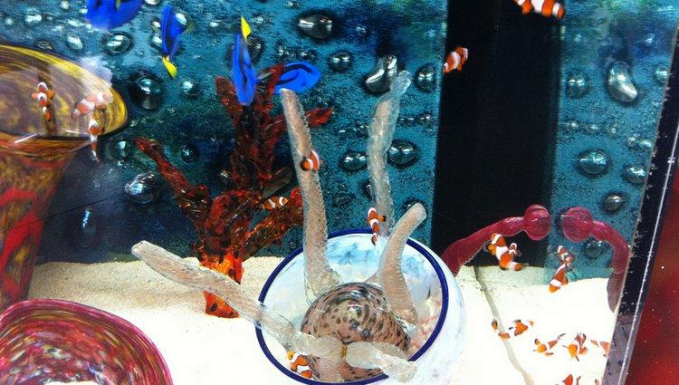 Living Coast Nature Center Aquarium