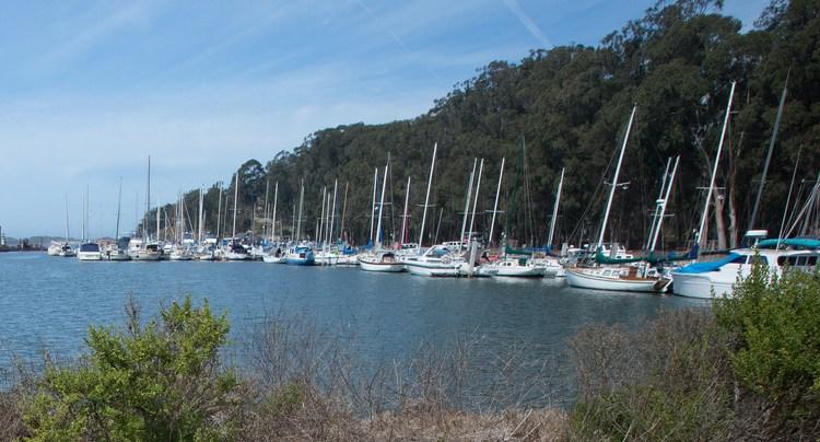 Marina Morro Bay State Park