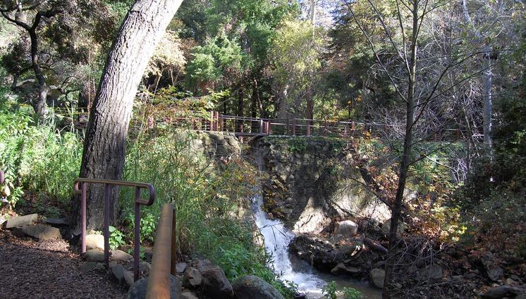 santa barbara botanical gardens day trip