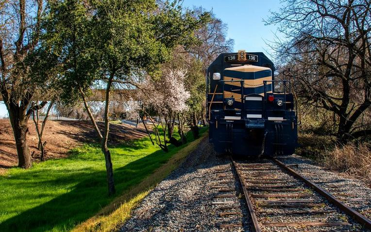 Sacramento River Train