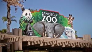 San Diego Zoo Discount Tickets