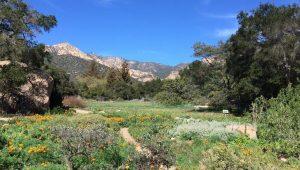 Santa Barbara Botanic Garden Day Trip