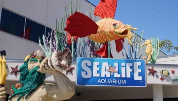 Sea Life Aquarium California