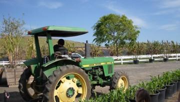 Tanaka Farms Irvine U Pick Farm Tours