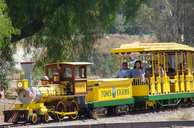 Toms Farm Railroad