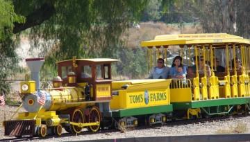Toms Farm Temescal Canyon Corona Day Trip