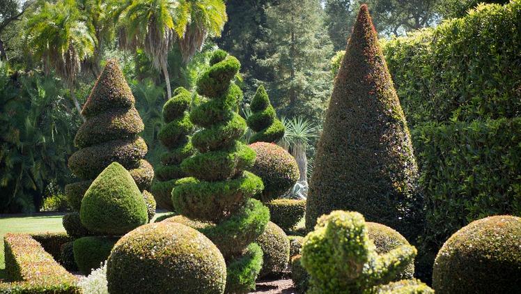 Topiary Garden Lotusland Santa Barbara