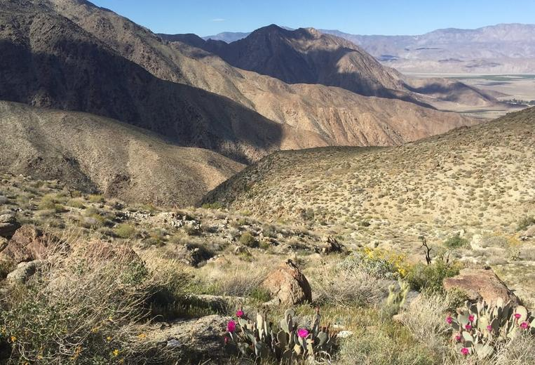 Anza-Borrego Desert State Park Day Trip