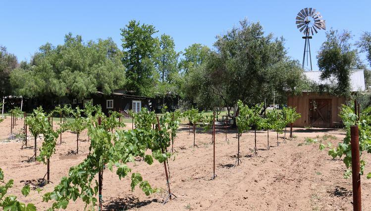 Bernardo Winery San Diego