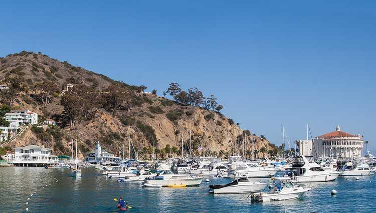 Catalina Island Valentine's Day trip