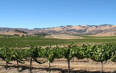 Edna Valley San Luis Obispo