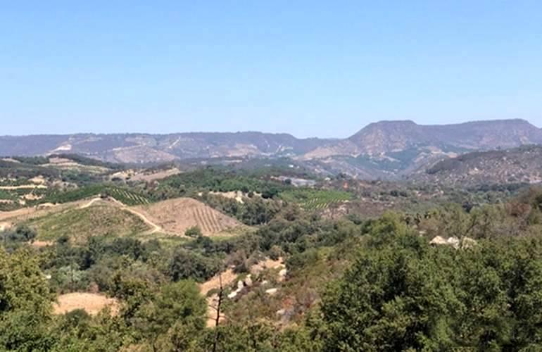 Fallbrook California Day Trip