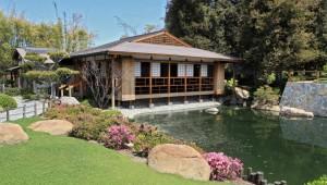 Japanes Gardens Van Nuys Day Trip