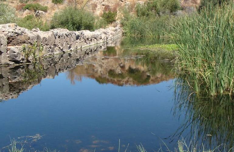 Mission Trails Park Day Dam