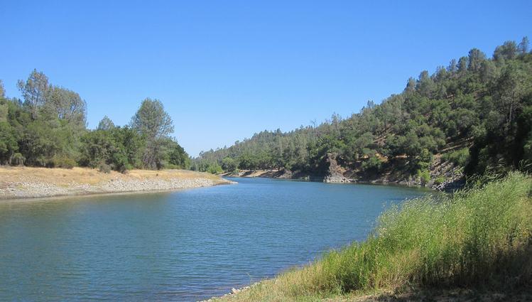 Putah Creek near Winters CA