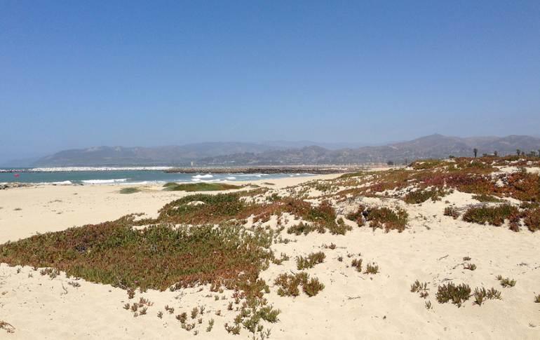 Ventura Day Trip