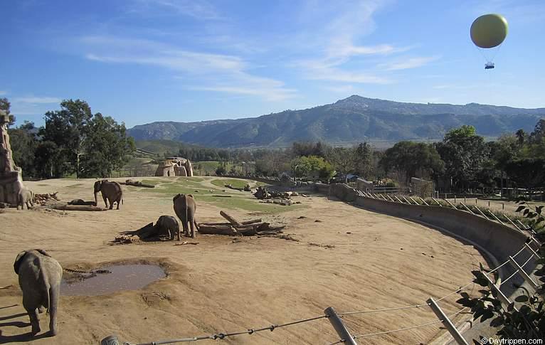 Safari Park Coupons