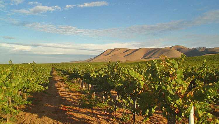 Santa Maria Cambria Winery